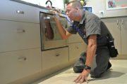 pest control treatment by pest ex