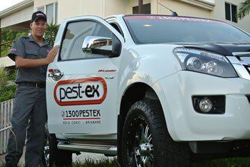 pest control dutton park