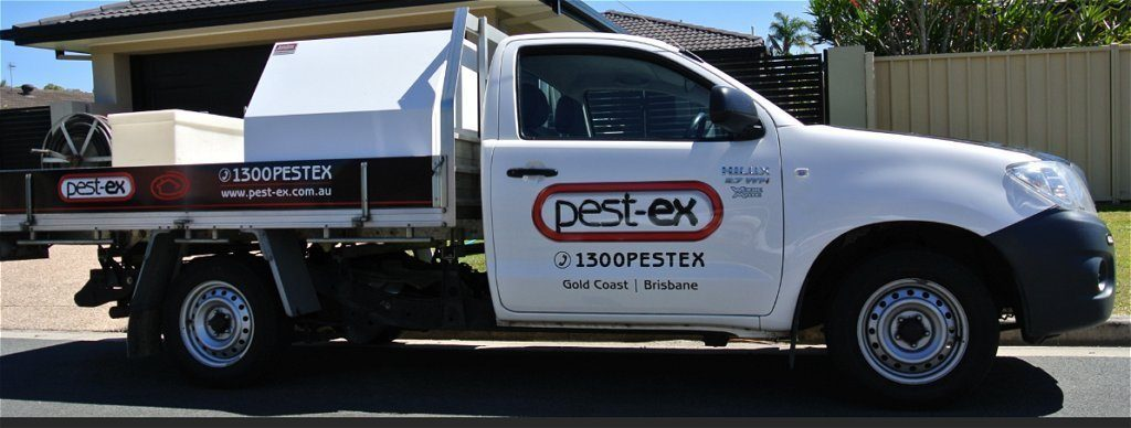 herston-pest-treatment