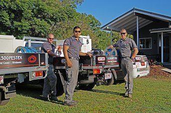 pest control regents park image