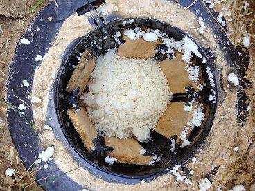 termite bait image