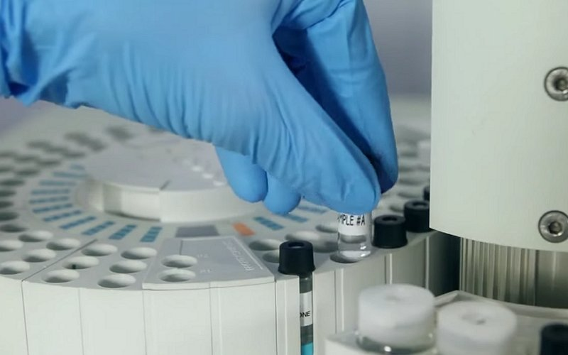 termidor research development image