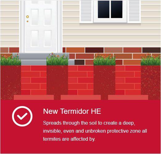termidor he termite treatment image