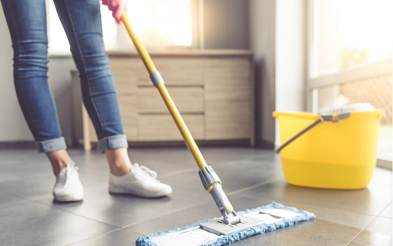 cleaning after pest control image