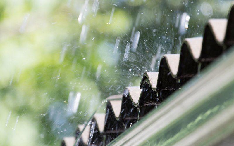 How Does Rain Affect Pest Control Treatments? | Pest Ex