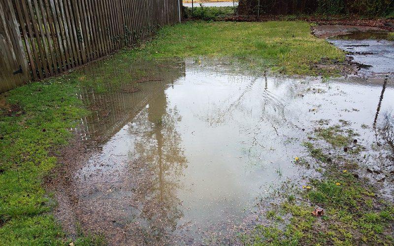 rain wash away pesticides image
