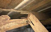 termite infestation gold coast home1 image