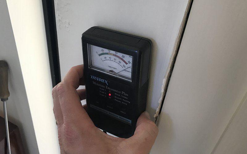termite inspection moisture meter image