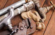plumbing renovating termites 1 image