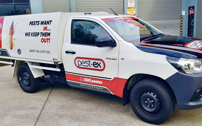 pest ex termite treatment professionals image