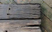 railway sleepers termites image