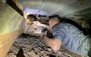 termite treatment quote save money image