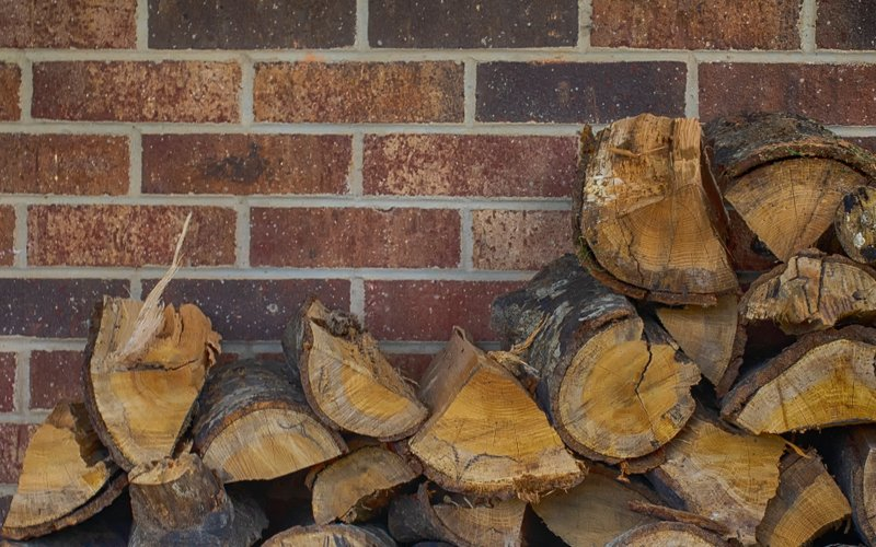 timber against wall cause termites image