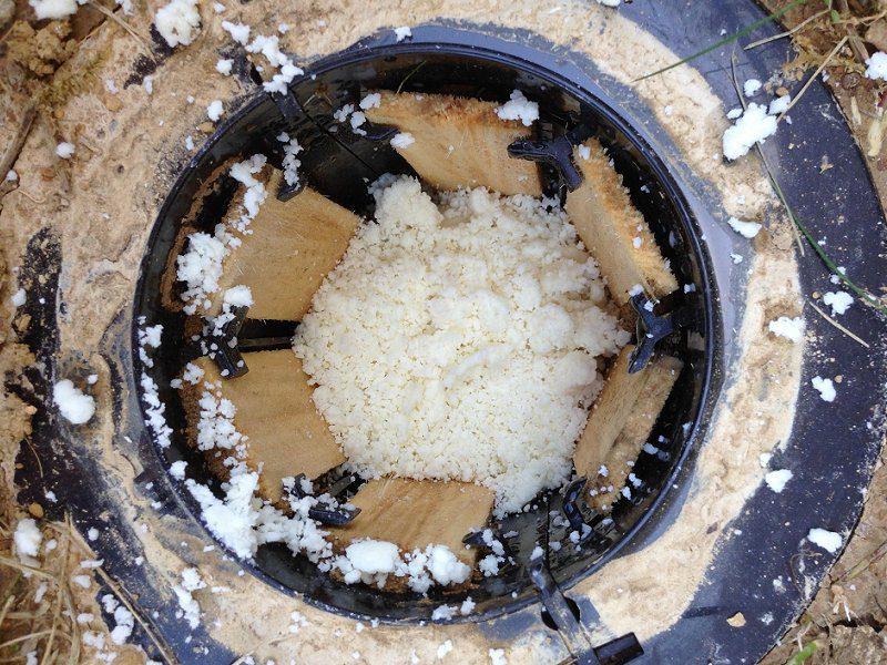 termite bait station requiem image