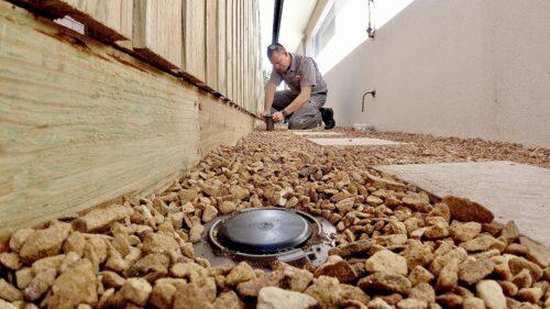 termite-bait-system