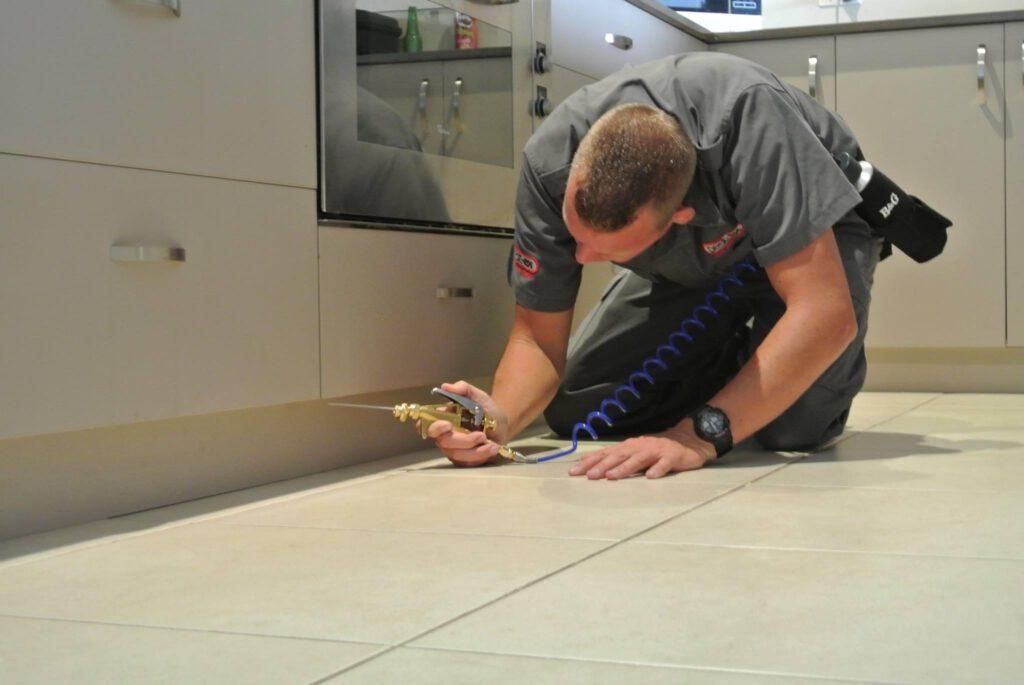 pest control services by pest ex
