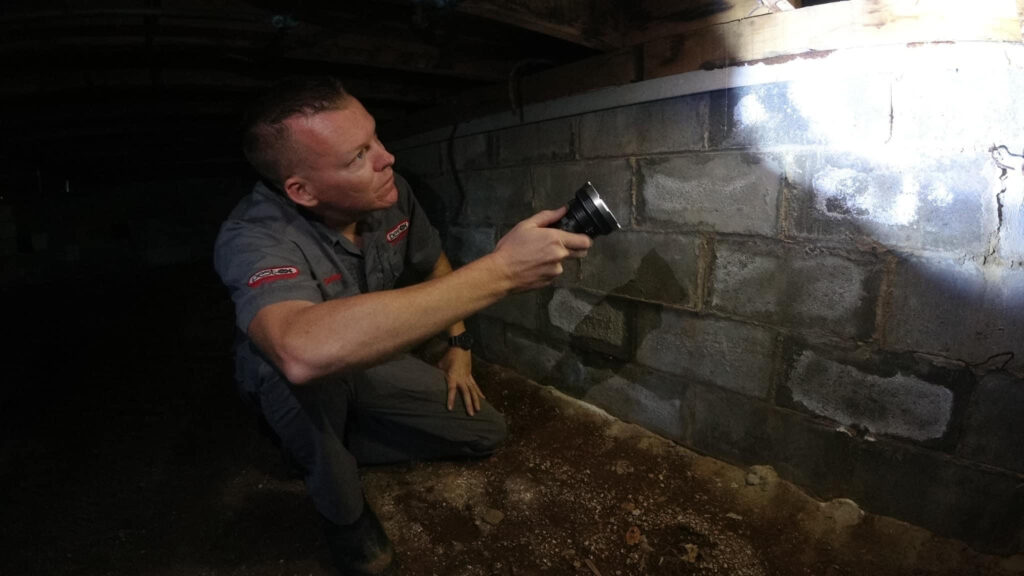 Under house termite and pest inspection