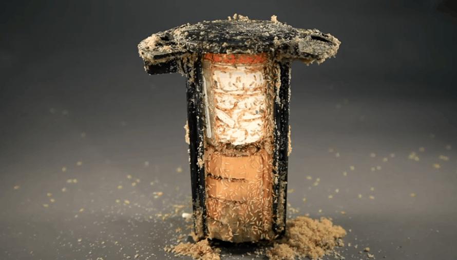 termite-treatment-gold-coast-bait-system